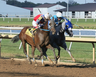 Operation Stevie wins battle in Gus Grissom Stakes  at Indiana Grand Racing & Casino